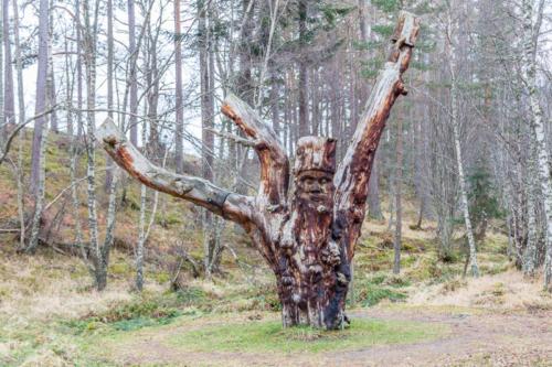 Frank Bruce Sculpture Trail-2