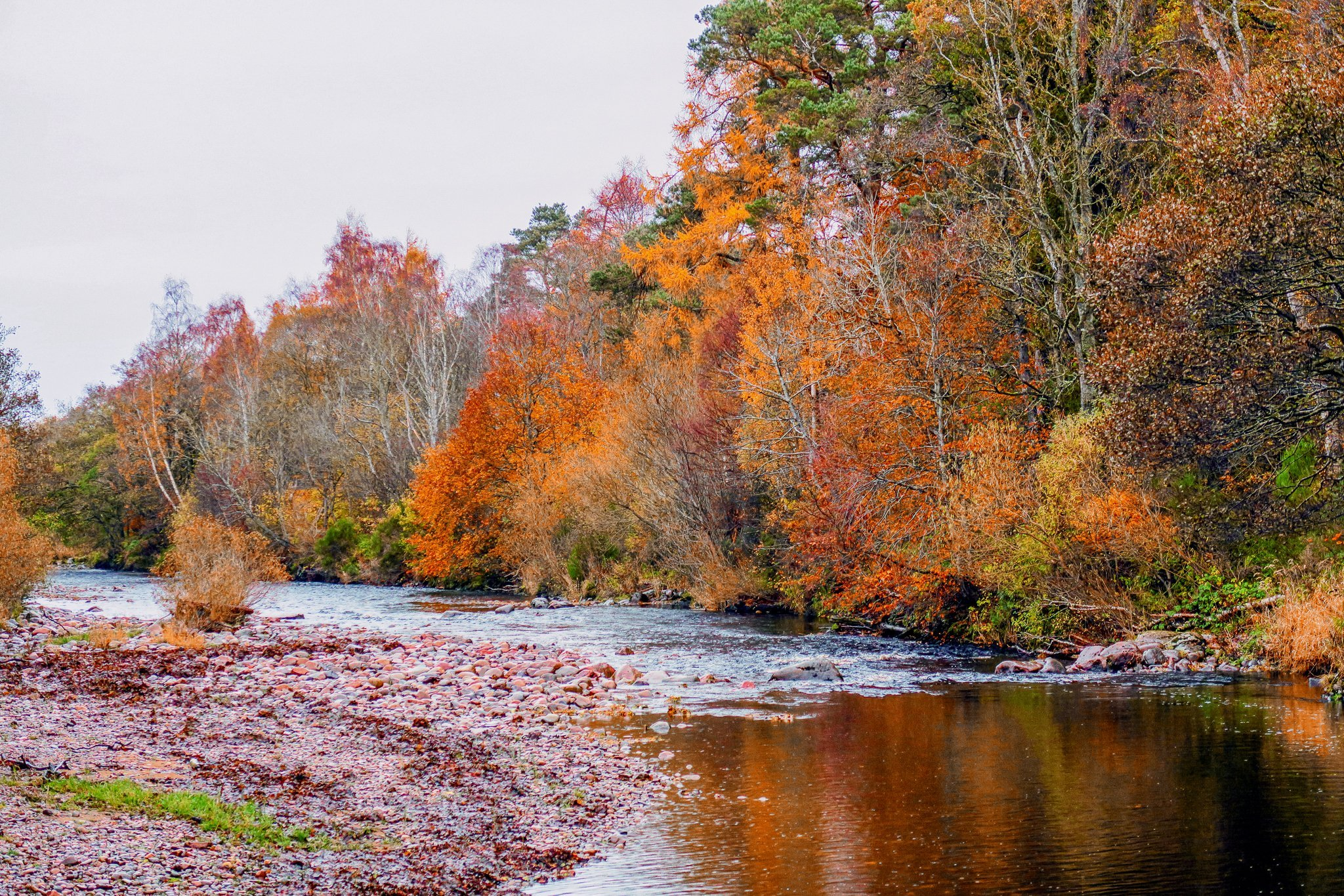 Trees in vibrant autumn colours are reflected in the River Nairn