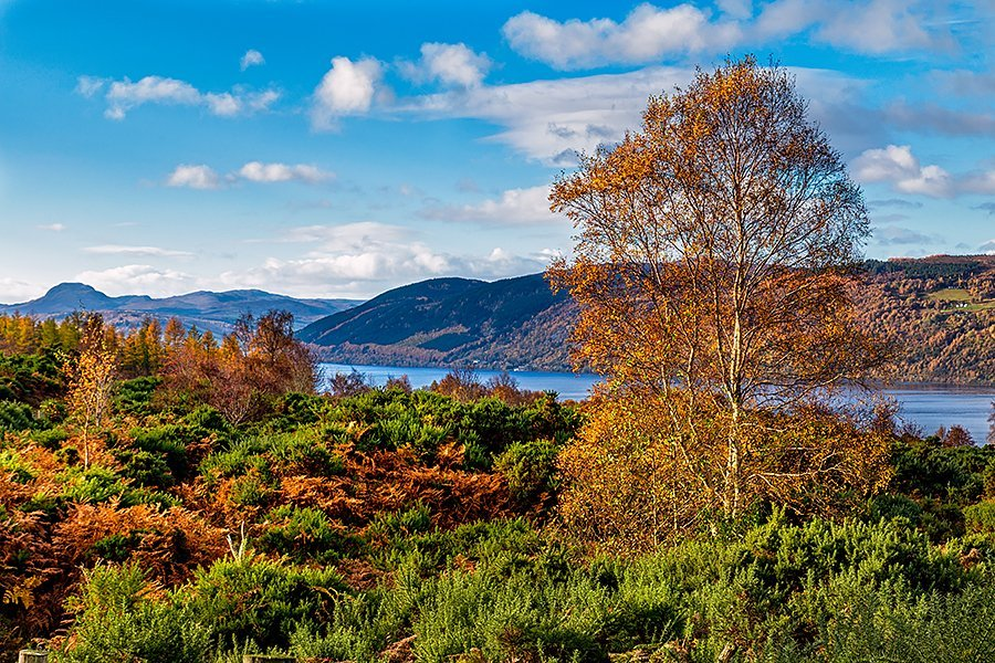The view over Loch Ness