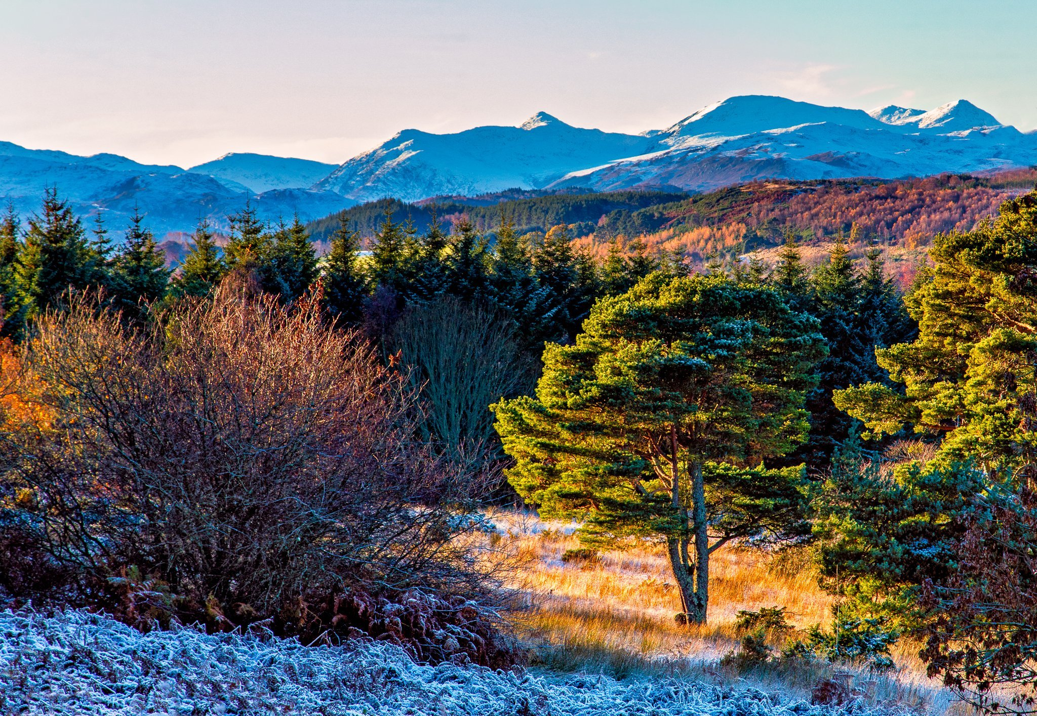 View down a frosty hillside towards the snowcapped mountains