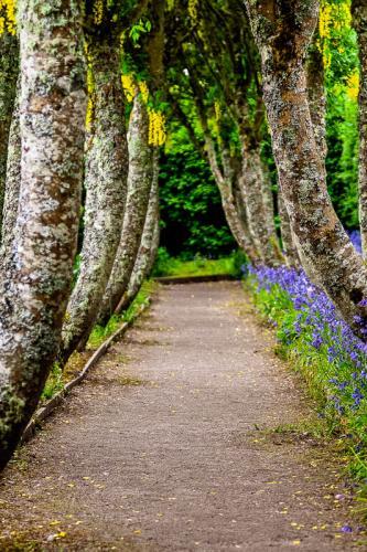 Cawdor Castle Garden
